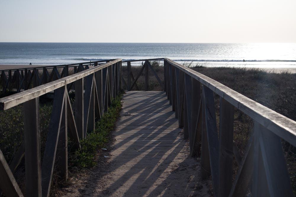 El Palmar Surfen Nexo Surfcamp